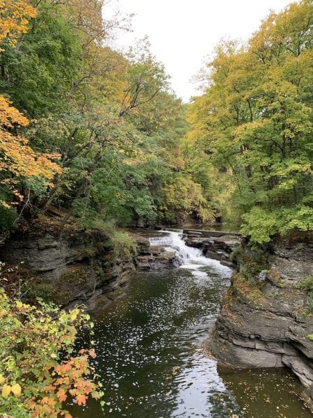 A gorge on Cornell's beautiful campus in the Finger Lakes.